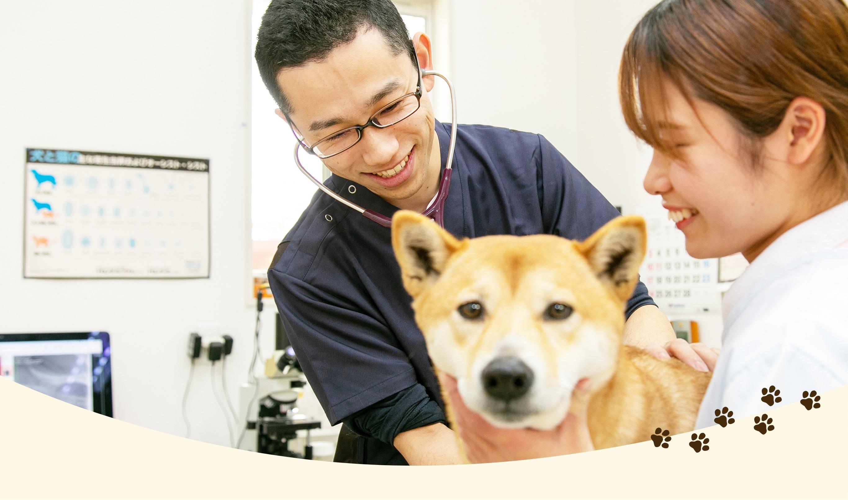 大切な命と健康な生活をお守りします ワンちゃん・ネコちゃんと飼い主様のかけがえのない時間を医療面からサポート